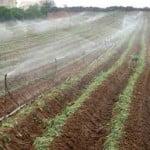 irrigaz