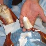 madonna-decapitata-bari