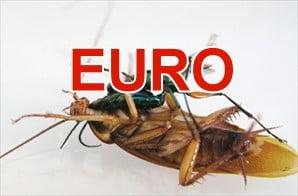 euro-scara