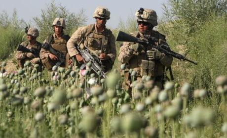 militari USA nei campi di oppio