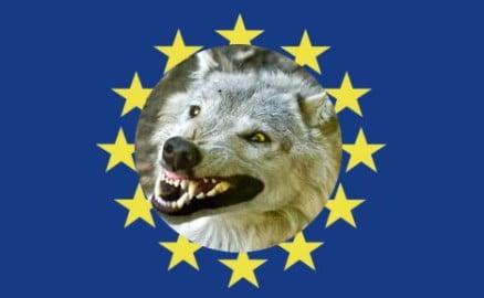sciacallo-UE