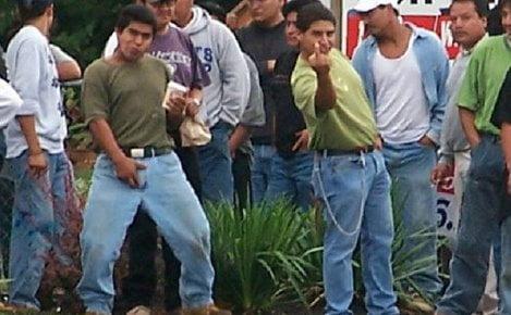 immigra