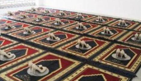 islam-tacchi