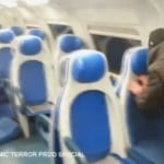vandali-treno