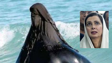 burqa-mare