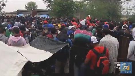 profughi2