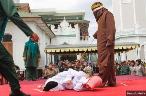 indonesiasharia2