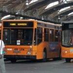 bus_napoli