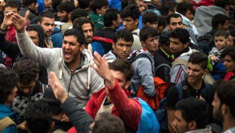 profughie