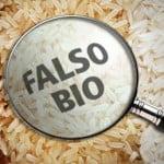 falso_bio