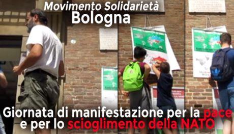 movisol_Bologna_01