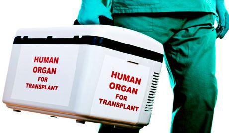 organi pazienti positivi