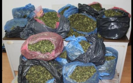 Droga: a Pozzallo sequestrati 36 kg khat, arrestato somalo