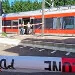 treno-svizzera