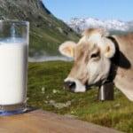 quote-latte