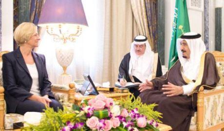 Pinotti-Arabia-Saudita