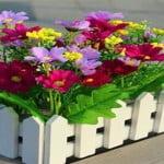 piante-e-fiori