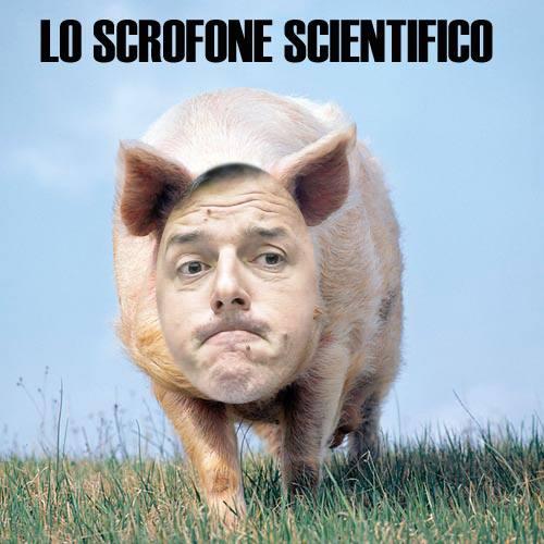 scrofone_n