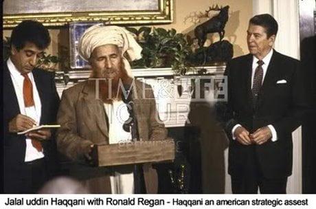 reagan talebani