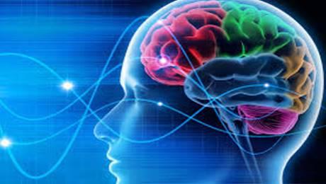 chip nel cervello umano