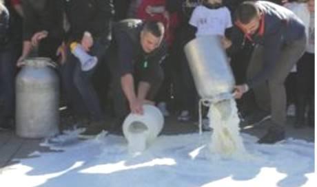 Urne aperte in Sardegna, ma la protesta dei pastori non si ferma