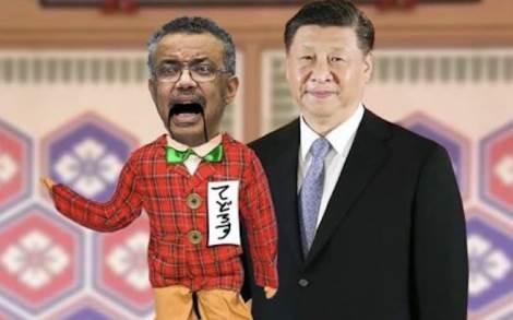 oms Cina