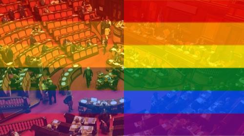 omofobia ddl zan