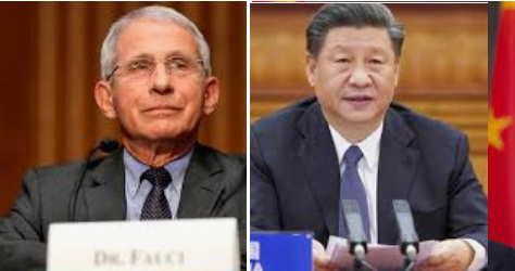 accuse a Fauci scienziati cinesi