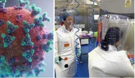 Coronavirus nato in laboratorio