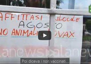 no animali e no vax
