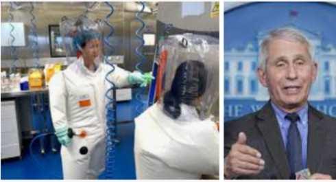 fauci esperimenti nel laboratorio di Wuhan
